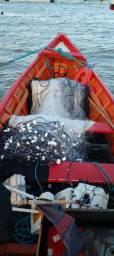 Título do anúncio: Vendo barco trabalhando com duas redes
