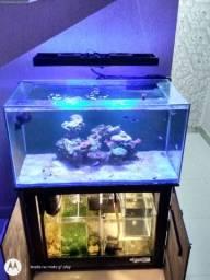 Vendo aquário marinho completo