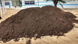 Carradas terra preta vegetal plantio