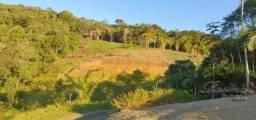 Chácara com 1 dormitório à venda, 23000 m² por R$ 105.000,00 - Anhaia - Morretes/PR