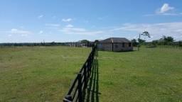 Fazenda de 1500 hectares em Alto Alegre/RR, ler descrição do anuncio