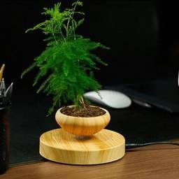 Planta com levitação Magnética