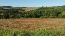 Fazenda 42 alqueires a 30 km de Londrina