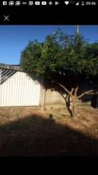 Vende-se ou troca casa em Ji-Paraná em uma em machadinho