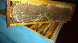 Vende-se mel de abelha Italiana