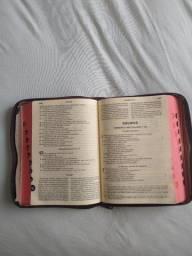 Bíblia Católica Ave Maria