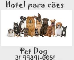 Título do anúncio: Hotel para cachorro e gato em BH