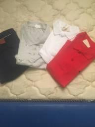4 camisetas polo menino