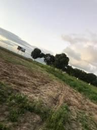 Vendo 4 terrenos localizado próximo à cidade de campo alegre