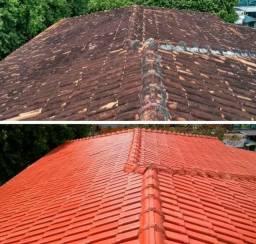 Limpeza de telhado - pintor - pedreiro e tudo para construcao