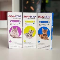 Bravecto Transdermal Gatos