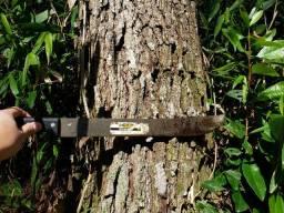 Título do anúncio: Reflorestamento Pinus e Eucalipto - Tunas do Paraná