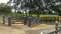 Fazenda formada, 200 hectares 100% asfaltoa Cuiabá, na BR