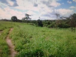 Vendo Fazenda em Tocantins de 263 Alqueires