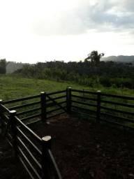Vende-se esta fazenda de 20 alqueires, titulada, no povoado Paulo Fonteles