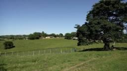 503 hectares a 12km do asfalto
