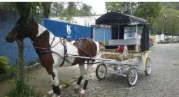 Charrete, Troller, carroagem, cavalos, Trole, América trote