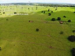 Fazenda 28,5 Alqueirao Plana Dupla Aptidao 100 % Aproveitamento