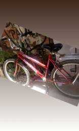 Bicicleta aro 26 unisex