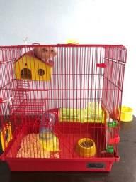 Título do anúncio: Gaiola Hamster com 1 hamster Sírio incluso