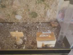 Aquário mais de 40 litros com bomba pedras ornamentais r$ 180