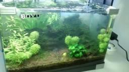 Aquario curvo boyu 85 litros