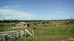 Fazenda de 2500 hectares Caroebe/RR, ler a descrição do anuncio