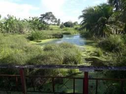 Fazenda com 15 hectares estruturada de tudo na região de vera cruz