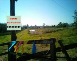 Sítio 8,8 hectares - lomba grande - novo hamburgo - rs