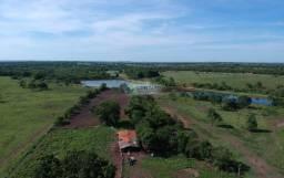 Fazenda de 1335 hectares Região de Jangada