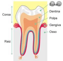 Contrata-se Dentista que faça canal!!