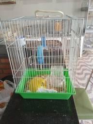 Título do anúncio: Gaiola de hamster por medio