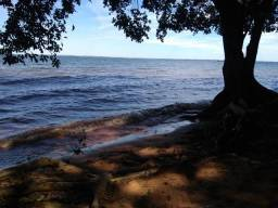 Lindo Terreno fundos para o rio Pereira Barreto mdpf