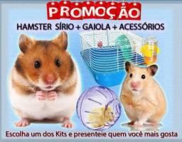 Kit Hamster Sírio + Gaiola!!!!