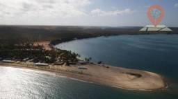 Terreno à venda, 617 m² por R$ 300.000 - Piaçavas - Barra de São Miguel/AL