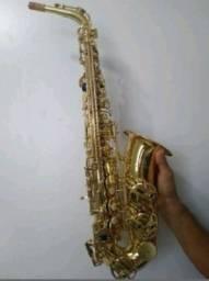 Saxofone Alto Michael Wasm30n