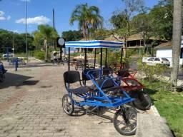 Vendo lote bicicletas praianas e triciclo família