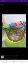 Casa mais 2 hamster fêmea