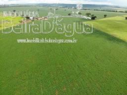 Fazenda em Soja e Pecuaria Beira Rio Tijuco em Ituiutaba