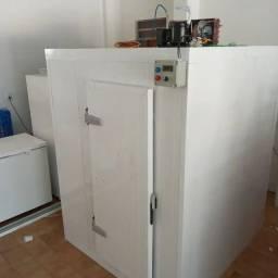 Título do anúncio: Câmara frigorífica padrões,  Montagem, manutenção, correção, fabricação.