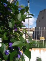 Título do anúncio: Casa para alugar com 1 dormitórios em Jardim algarve, Alvorada cod:LI50880578