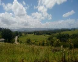 Sítio 2,1 hectares - santa cristina do pinhal - parobé - rs