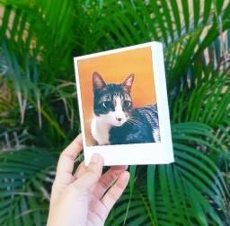 Polaroid de Mesa com foto do Pet