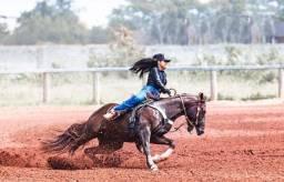 Título do anúncio: Vendo Cruza do cavalo Beaver Cody AGR Quarto de milha PO
