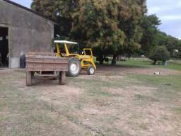 Capataz de fazenda