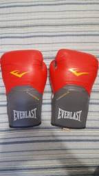 Luvas boxe/muay thai Everlast