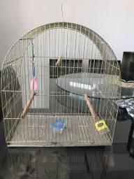 Gaiola pássaro usado