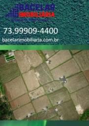 Excelente Fazenda no Sul da Bahia