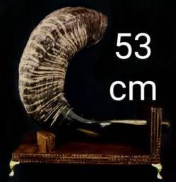 Título do anúncio: Shofar de Carneiro Black Horn Especial! Raro!