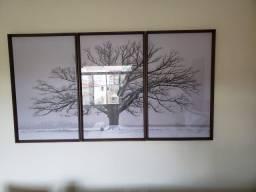 3 quadros Serras do Sul ? gigantes ? árvore ? Madeira e vidro ? 6 meses de uso